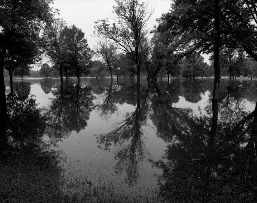 Meadowbrook Bayou